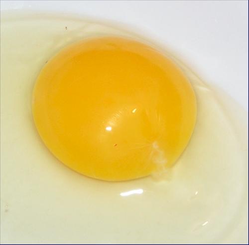 vejce06